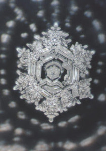 water crystal after the prayer