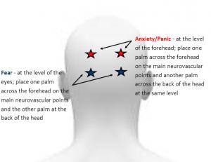 neurovascular points back
