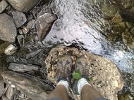 walking by a stream