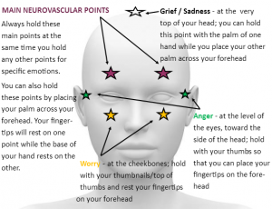 neurovascualr points front